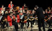 WCB_Spring_Concert_2015-18.jpg